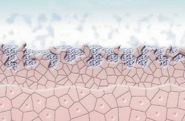 Mikrodermabrasion Schritt 1